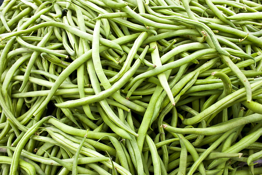 Local produce haricots verts beans at farmers market in Normandy, France