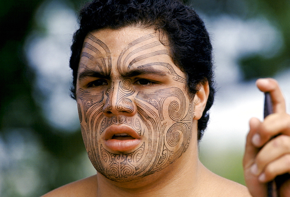 Maori warrior at a tribal gathering in New Zealand - 1161-7883