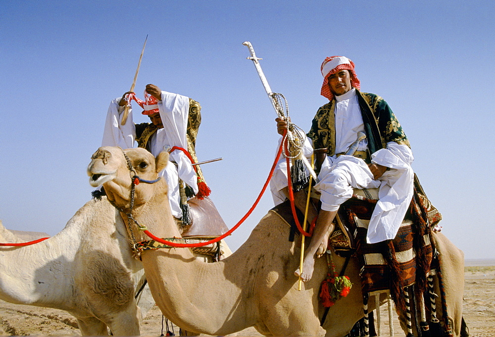 Camels and arab riders in desert Riyadh, Saudi Arabia