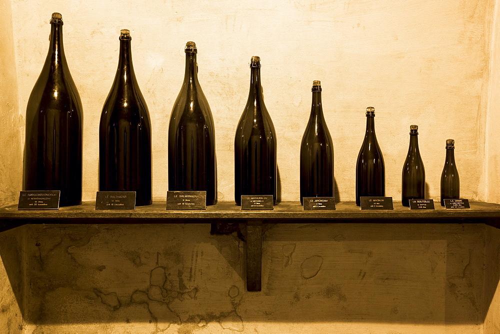 Demie, Magnum, Jeroboam, Methusalem, Balthazar, Salmanazar, Nebuchadnezzar bottles at Champagne Taittinger in Reims, Champagne-Ardenne, France, Europe