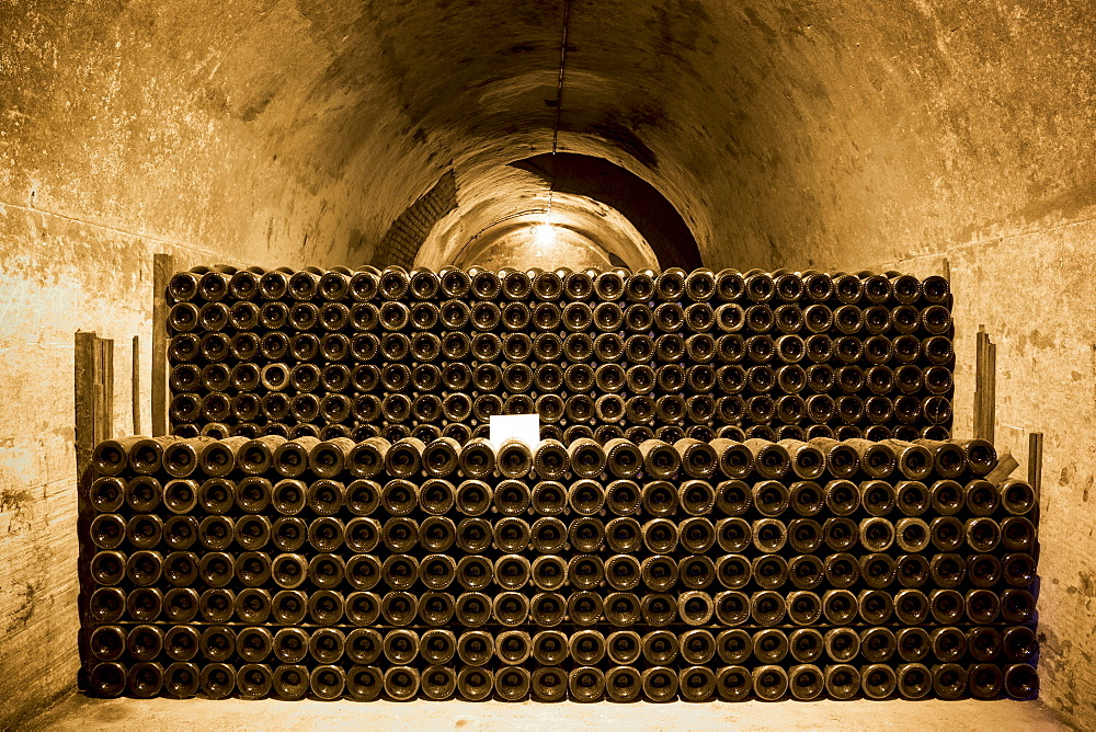 Comtes de Champagne which has been ageing 8-10 years in caves of Taittinger Champagne in Reims, Champagne-Ardenne, France, Europe