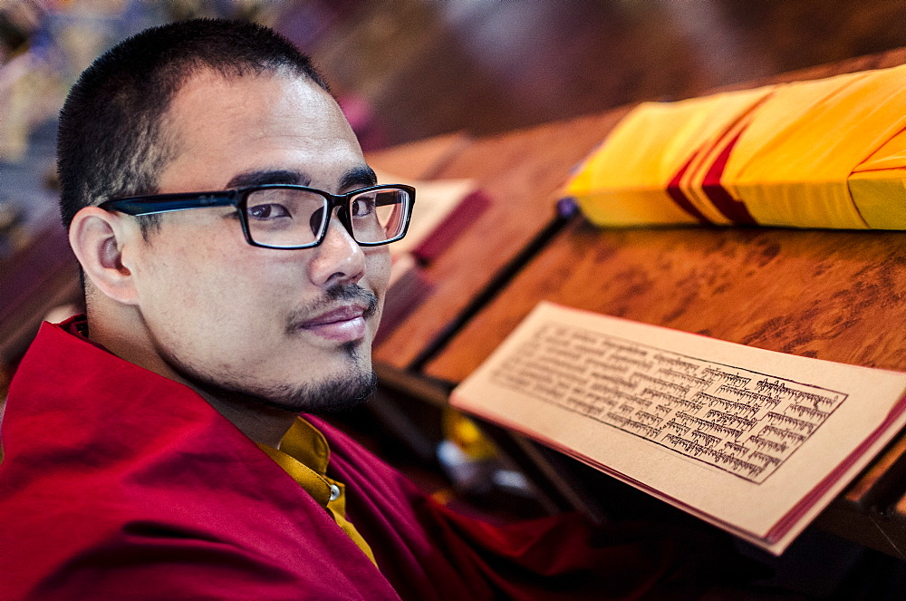 A Buddhist monk reads a volume of Kagyur Rinpoche, Hemja, Nepal, Asia - 1163-109