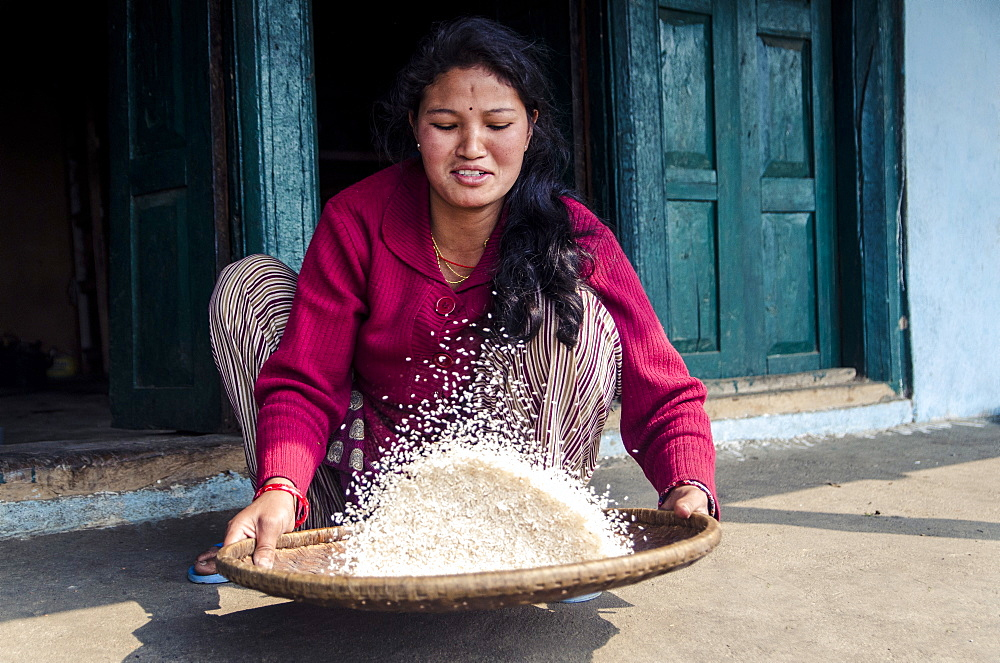 A woman sifts rice to remove stones, Mulkharka, Nepal, Asia - 1163-91