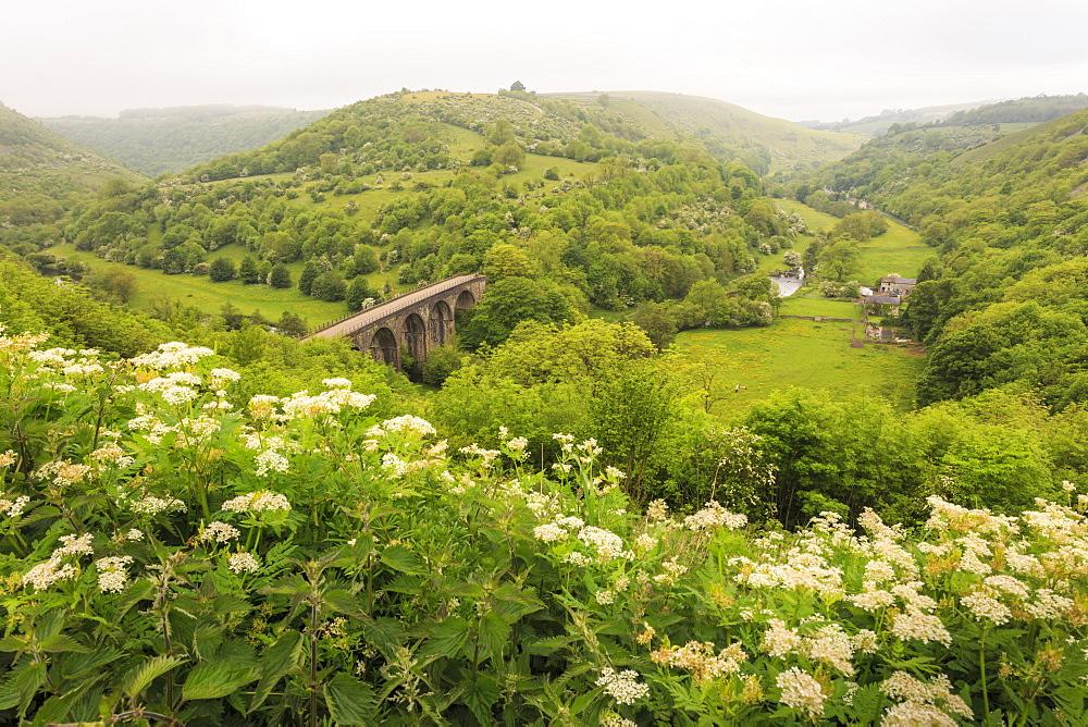 Monsal Trail crosses Monsal Dale on Monsal Head viaduct, limestone dale scenery in summer, Peak District, Derbyshire, England, United Kingdom, Europe