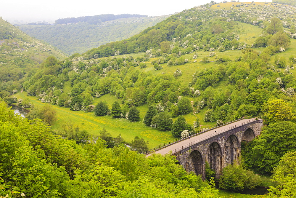 Monsal Trail viaduct, Monsal Head, Monsal Dale, former rail line, trees in full leaf in summer, Peak District, Derbyshire, England, United Kingdom, Europe