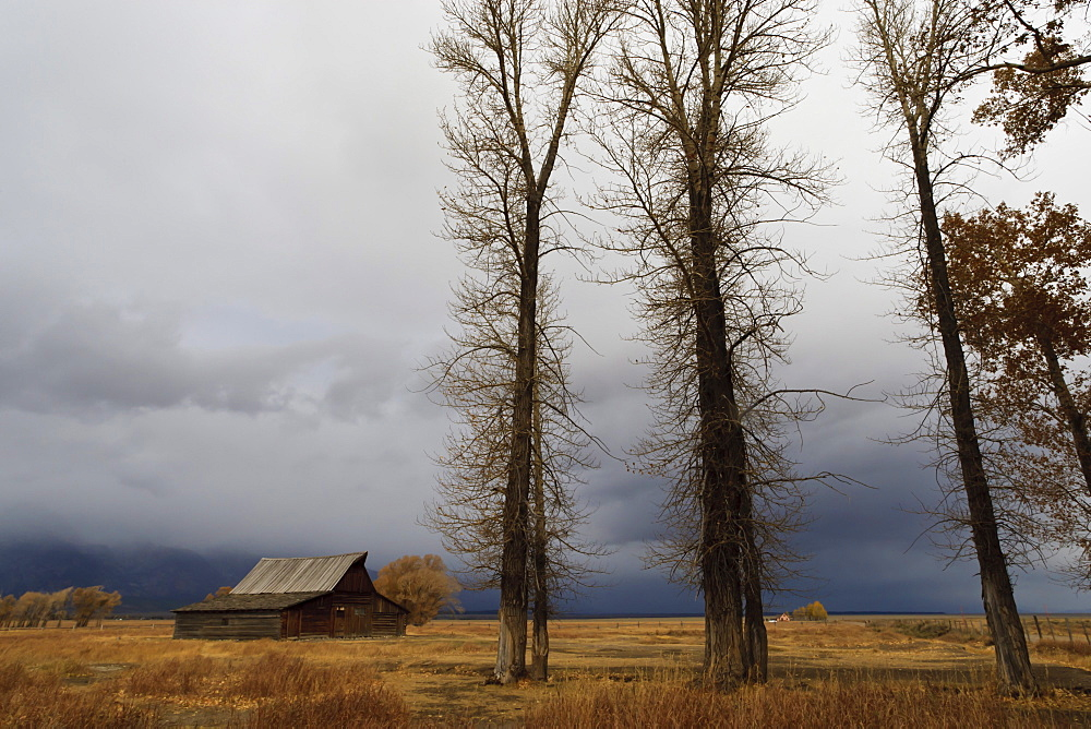 Autumn (fall) storm approaches, Mormon Row barn, Antelope Flats, Grand Teton National Park, Wyoming, United States of America, North America