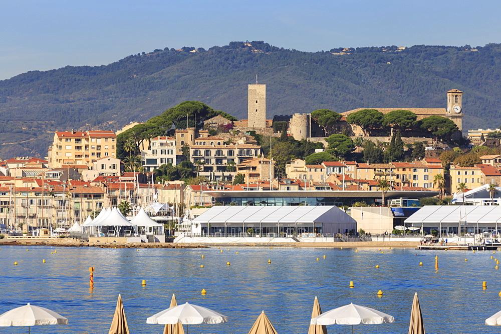 Le Suquet, from La Croisette, Cannes, Cote d'Azur, French Riviera, Alpes Maritimes, Provence, France, Mediterranean, Europe