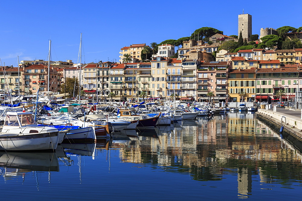 Reflections of boats and Le Suquet, Old (Vieux) port, Cannes, Cote d'Azur, Alpes Maritimes, Provences, France, Mediterranean, Europe