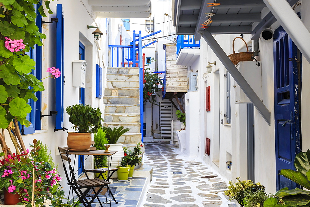 Narrow street, whitewashed buildings with blue paint work, flowers, Mykonos Town (Chora), Mykonos, Cyclades, Greece