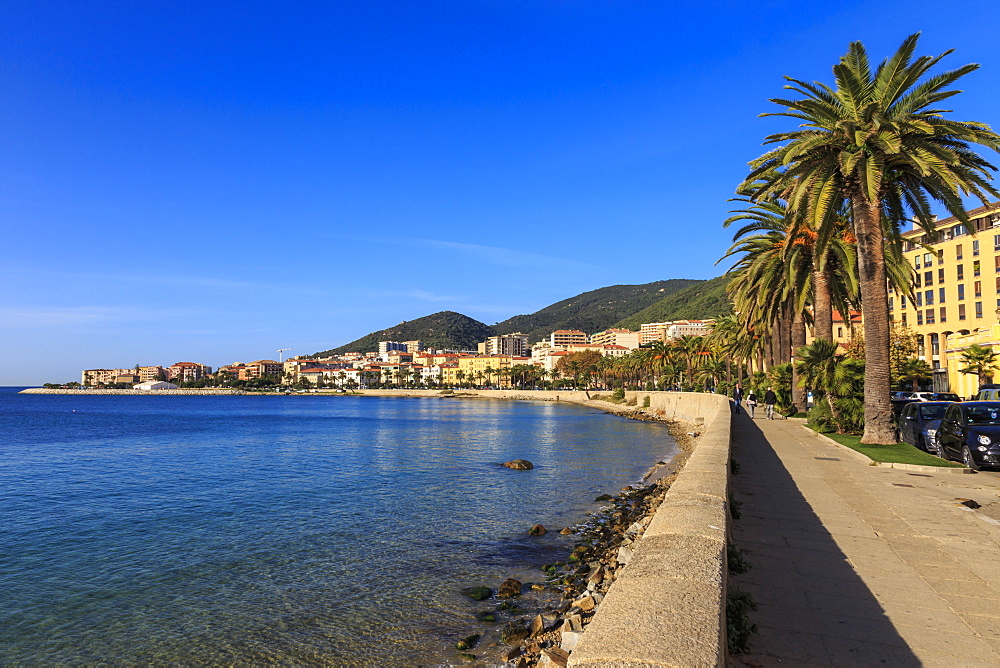 Saint Francois beach promenade with palm trees, morning light, Ajaccio, Island of Corsica, Mediterranean, France, Mediterranean, Europe