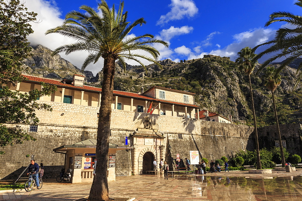 Sea Gate (West Gate), 16th century, old town gate with palm trees, St. John's Hill, Kotor, UNESCO World Heritage Site, Montenegro, Europe