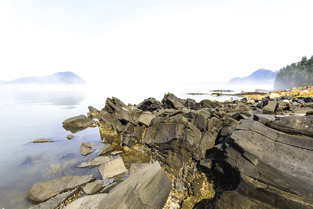 Mist clears from beautiful Petroglyph Beach, State Historic Park, archaeological site, Wrangell, pioneer port, Alaska, USA