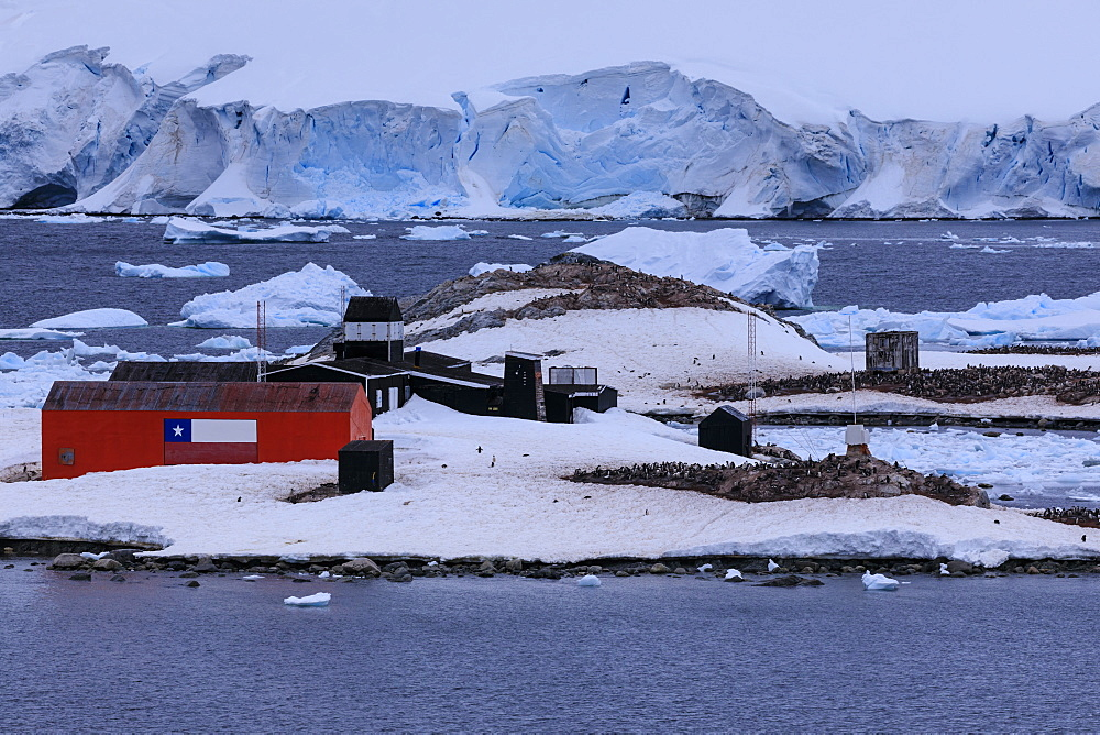 Elevated view, Chilean Gonzalez Videla Station, Gentoo penguins, icebergs and glacier, Waterboat Point, Paradise Bay, Antarctica, Polar Regions