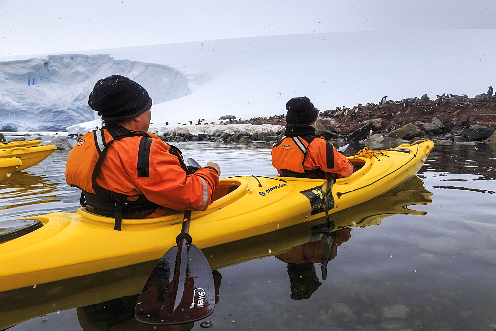 Couple kayaking in the snow, watching a Gentoo penguin colony, Chilean Gonzalez Videla Station, Waterboat Point, Antarctica, Polar Regions