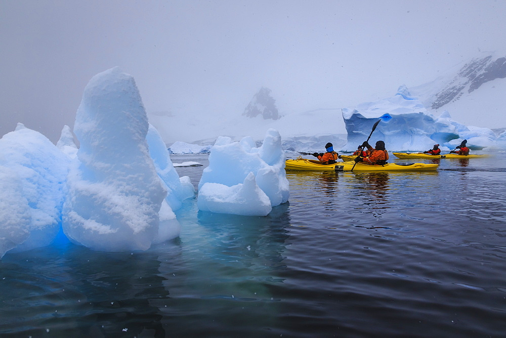 Expedition tourists kayaking in snowy weather, with blue icebergs, Chilean Gonzalez Videla Station, Waterboat Point, Antarctica