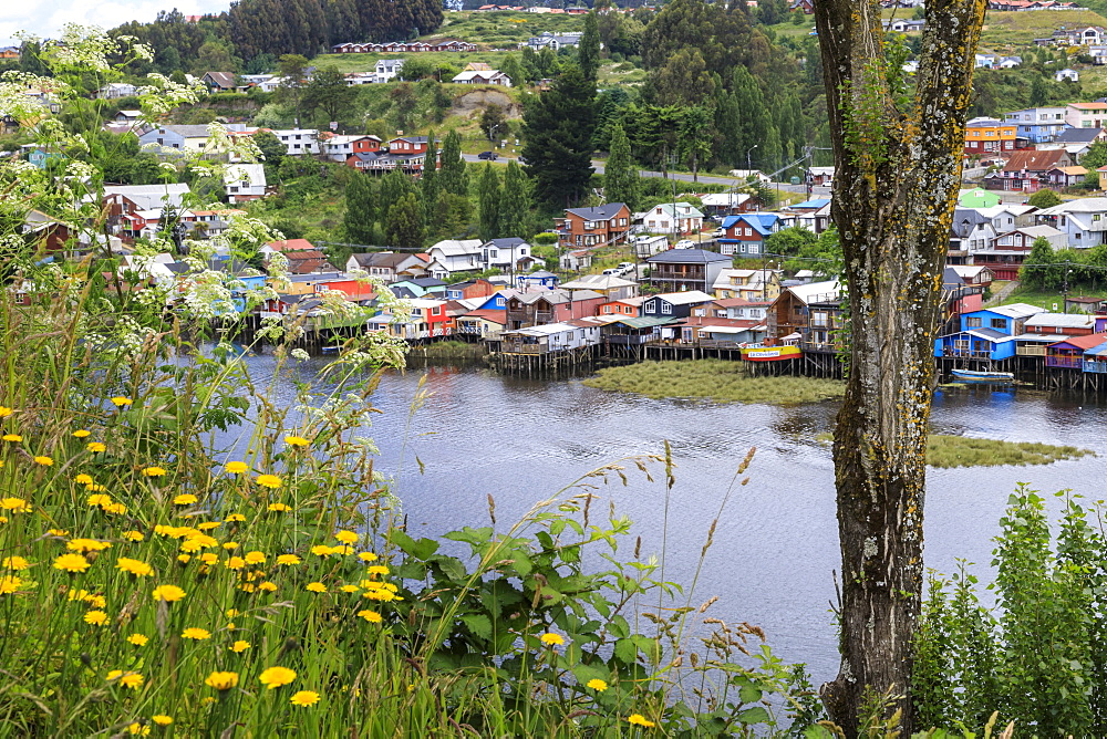 Palafitos, colourful stilt houses on water's edge, elevated view, unique to Chiloe, Castro, Isla Grande de Chiloe, Chile, South America - 1167-1865