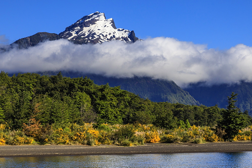 Snowy peak, lush forests, from Lake Todos Los Santos, Emerald Lake, Vicente Perez Rosales National Park, Lakes District, Chile, South America