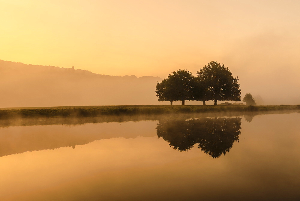 Reflections in River Derwent, dawn and autumn mist, Chatsworth Park, Peak District National Park, Chesterfield, Derbyshire, England, United Kingdom, Europe