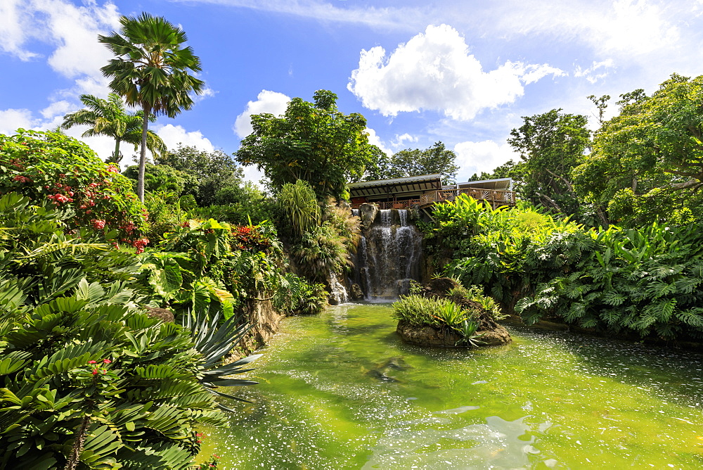 Jardin Botanique de Deshaies, botanic garden, Death In Paradise location, Deshaies, Basse Terre, Guadeloupe, Leeward Islands, West Indies, Caribbean, Central America