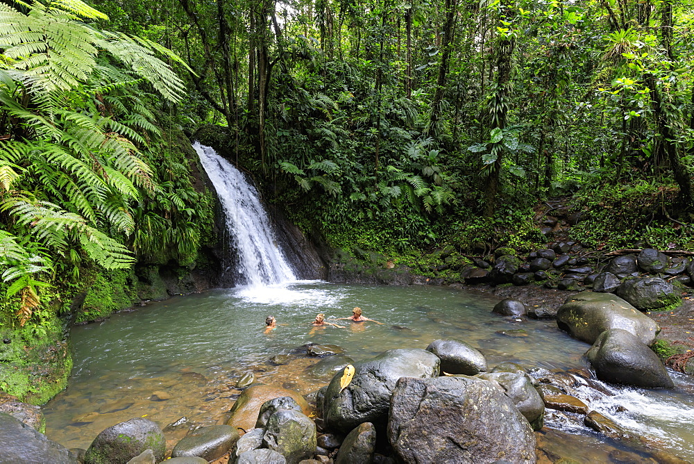 Cascade aux Ecrevisses, Crayfish Waterfall, Parc National de la Guadeloupe, Guadeloupe National Park, Basse Terre, Guadeloupe, Leeward Islands, West Indies, Caribbean, Central America