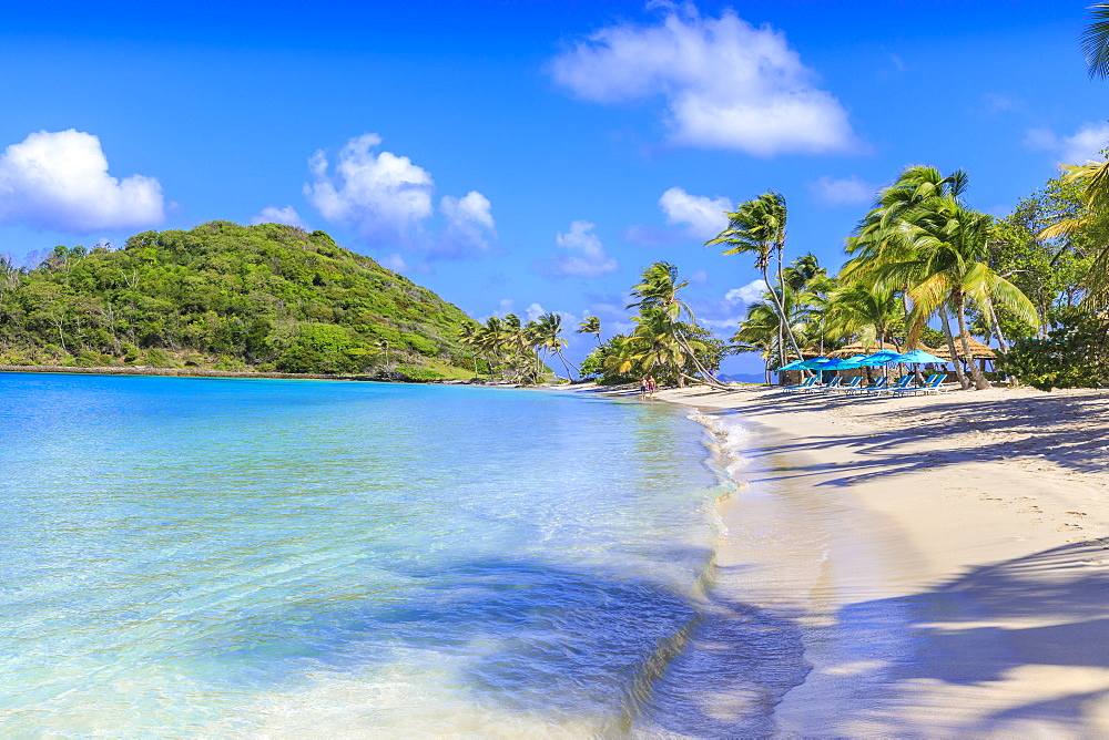 Beautiful white sand beach, turquoise sea, palm trees, Saltwhistle Bay, Mayreau, Grenadines, St. Vincent and The Grenadines, Windward Islands, West Indies, Caribbean, Central America