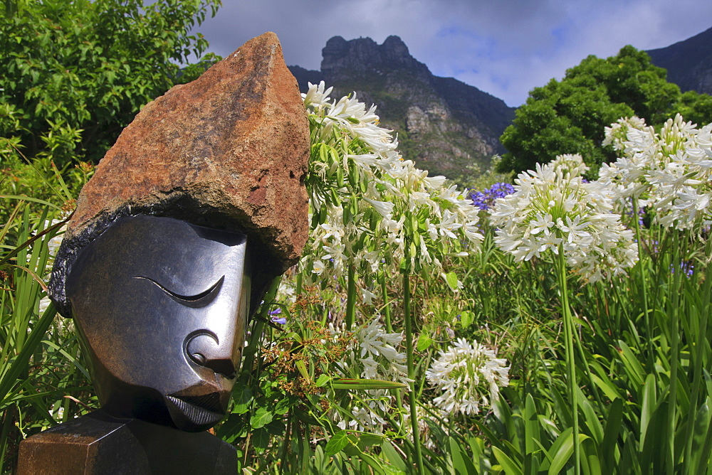 Statue with agapanthus and Table Mountain behind, Kirstenbosch National Botanical Garden, Cape Town, South Africa, Africa