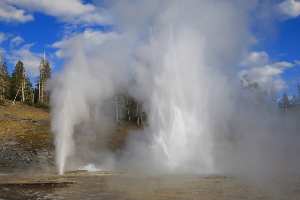Turban, Vent and Grand Geysers erupt, Upper Geyser Basin, Yellowstone National Park, UNESCO World Heritage Site, Wyoming, United States of America, North America
