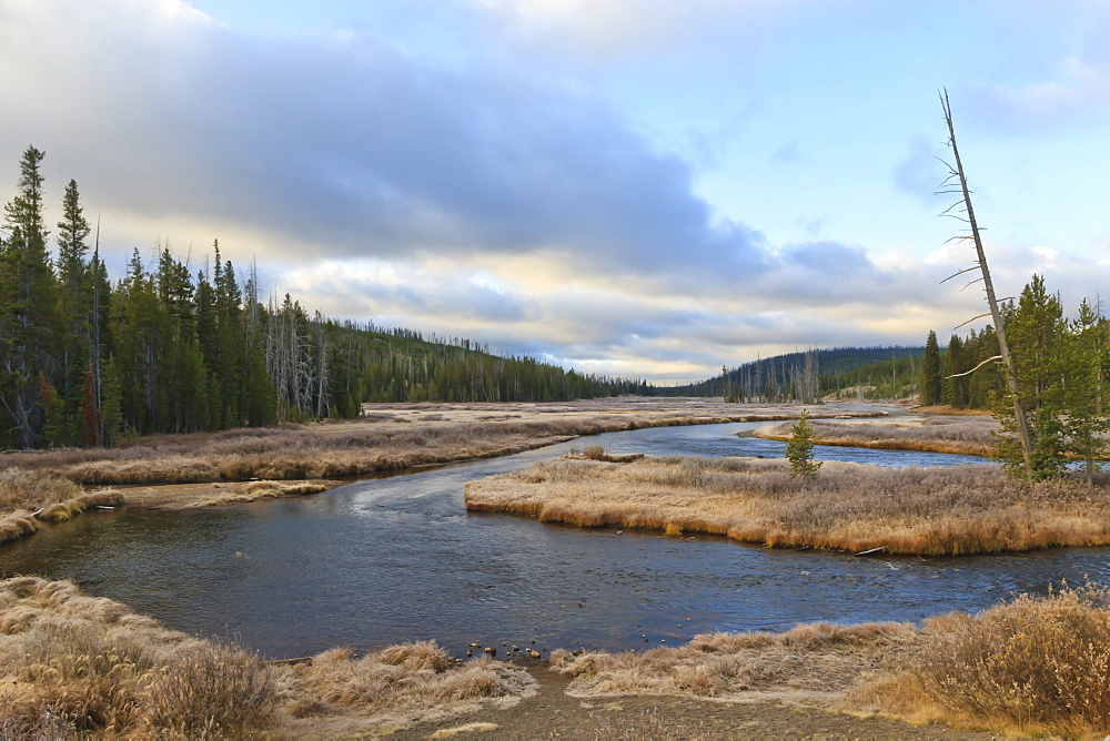 Lewis River meanders in the early morning;, Yellowstone National Park, UNESCO World Heritage Site, Wyoming, United States of America, North America