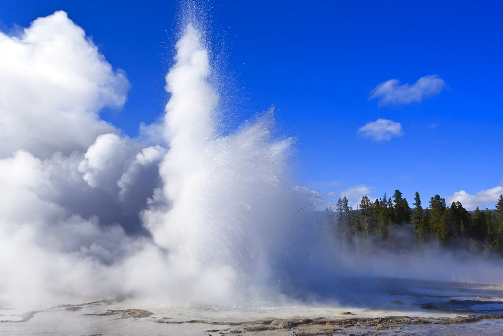 Sawmill Geyser erupts, Upper Geyser Basin, Yellowstone National Park, UNESCO World Heritage Site, Wyoming, United States of America, North America