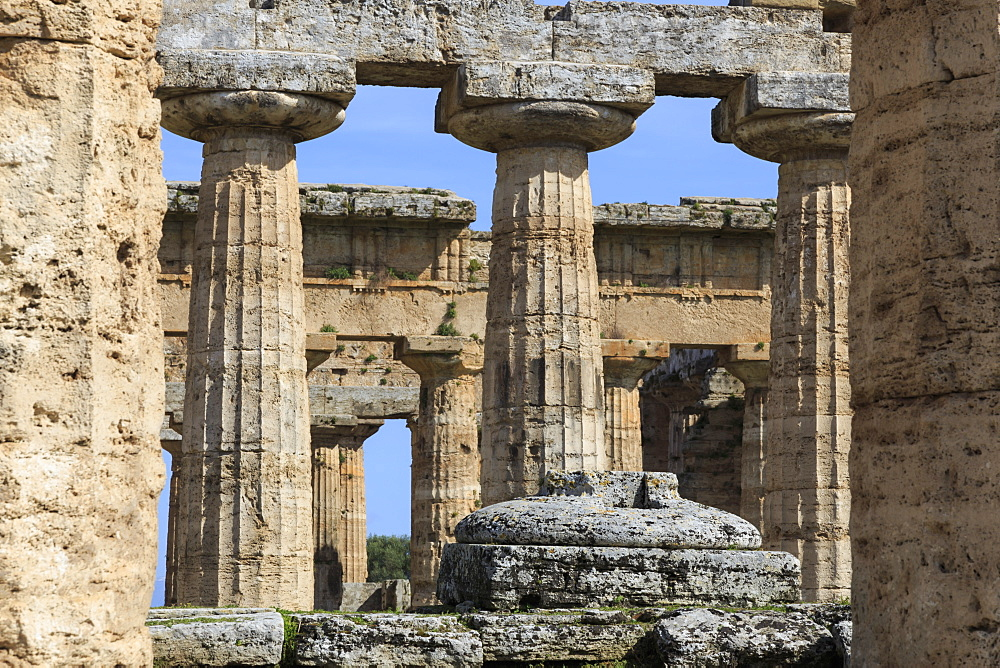 Temple of Hera (the Basilica) 530 BC, oldest Greek temple at Paestum, UNESCO World Heritage Site, Campania, Italy, Europe