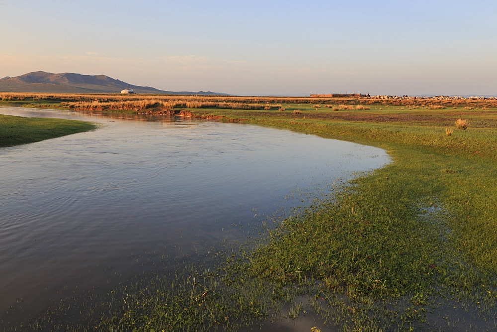River flows past ger, stock pen and herd lit by summer sunrise, distant hills, Nomad camp, Gurvanbulag, Bulgan, Mongolia, Central Asia, Asia