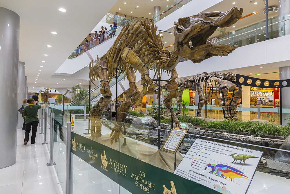 Huge dinosaur skeleton on display at a new shopping centre, Ulaanbaatar (Ulan Bator), Mongolia, Central Asia, Asia