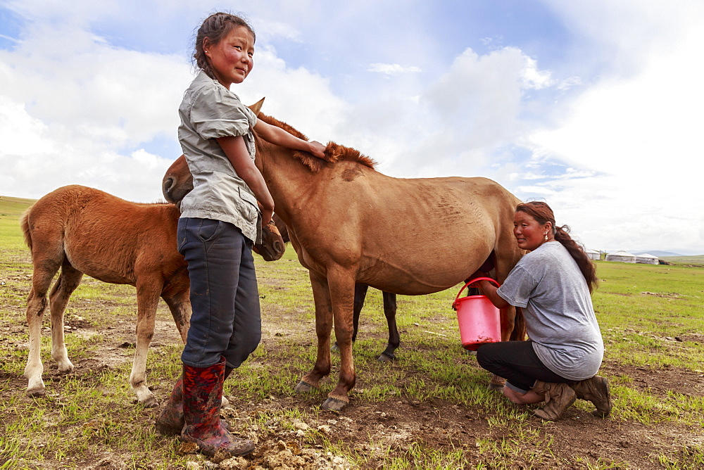 Lady milks mare (horse), daughter holds foal, Summer nomad camp, Khujirt, Uvurkhangai (Ovorkhangai), Central Mongolia, Central Asia, Asia