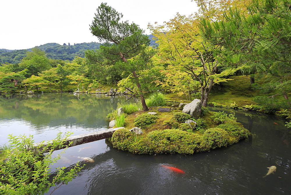 Tenryu-ji temple, Zen garden lake with carp, backdrop of borrowed mountain scenery in summer, Arashiyama, Kyoto, Japan, Asia