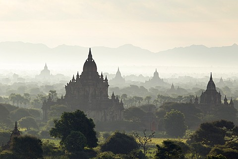 North and South Guni temples pagodas and stupas in early morning mist at sunrise, Bagan (Pagan), Myanmar (Burma), Asia - 1170-127