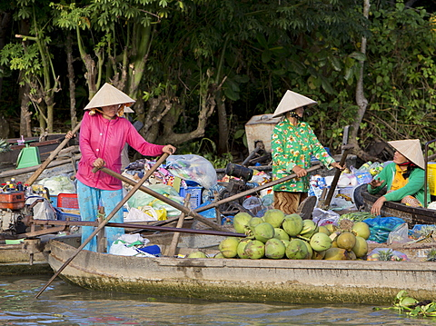 Phong Dien floating market, women wearing conical rice hats selling fresh coconuts, Can Tho, Mekong Delta, Vietnam, Indochina, Southeast Asia, Asia - 1170-193