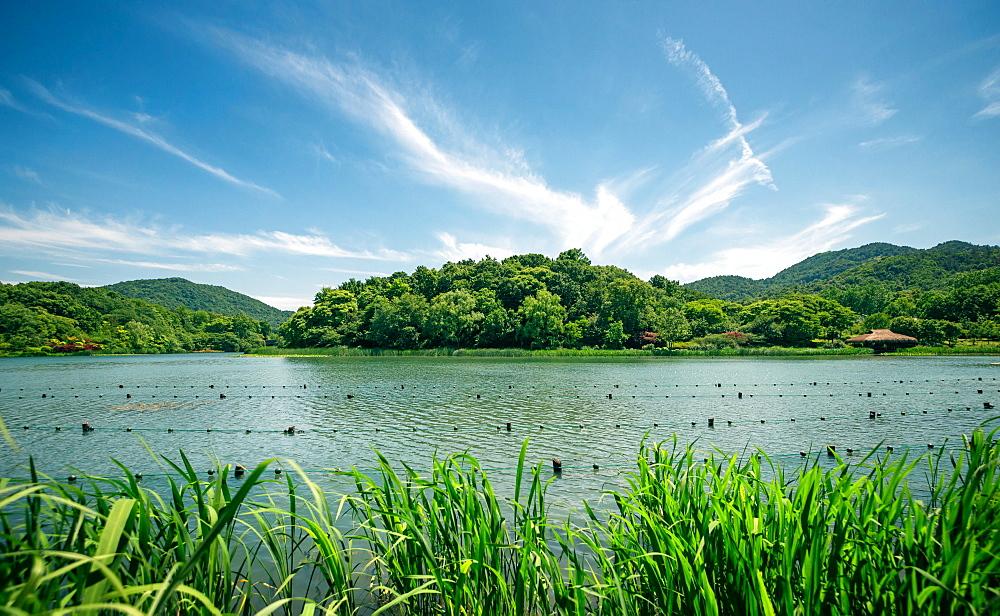 Green landscape with lake and lush hills in Hangzhou, Zhejiang, China, Asia