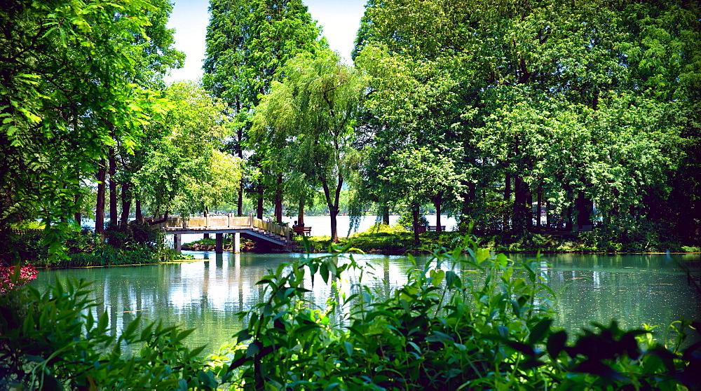 Secluded stone bridge surrounded by lush landscape at West Lake, Hangzhou, Zhejiang, China, Asia