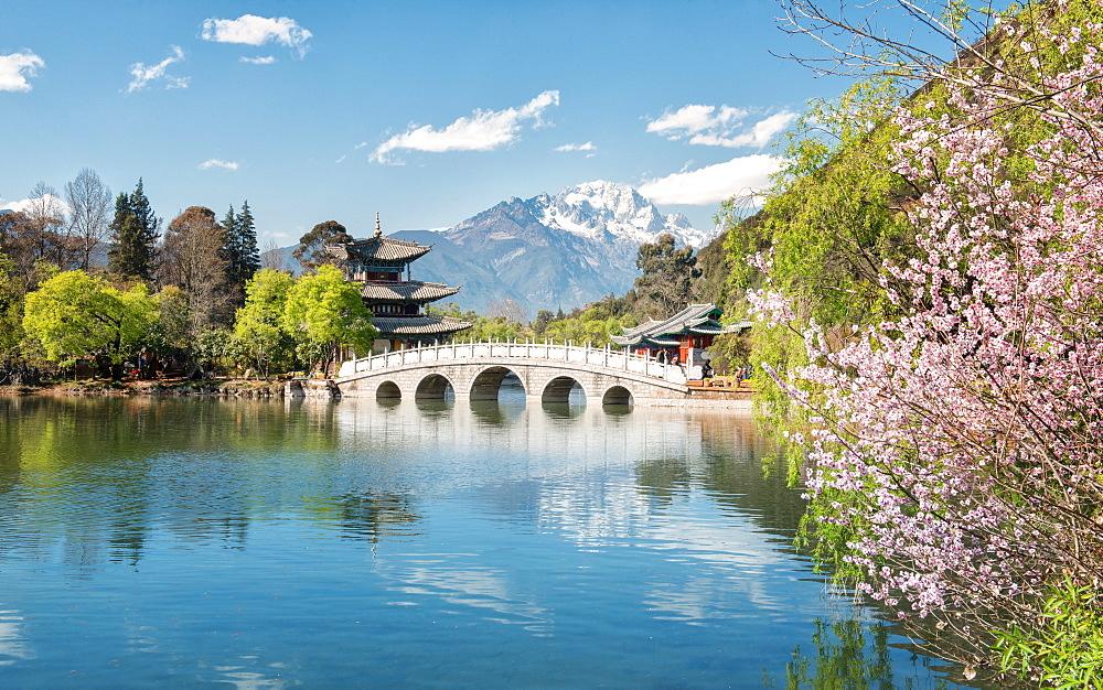 Moon Embracing Pavilion and Suocui Bridge at Black Dragon Pool in Jade Spring Park, Lijiang, Yunnan, China, Asia