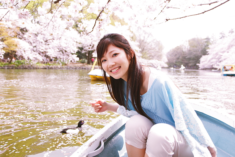 Japanese woman on a rowing boat with cherry blossoms in the background