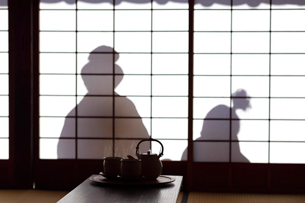 Shadow on Japanese Shoji Door