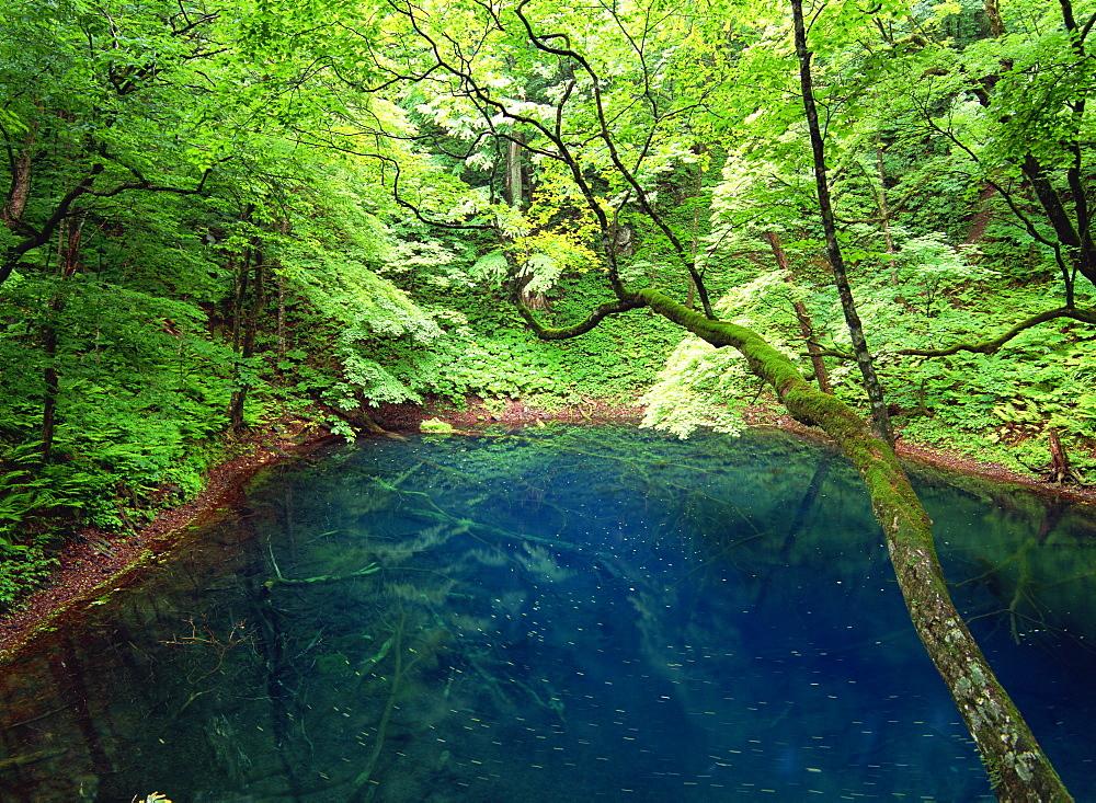 Aoi Pond, Aomori, Japan