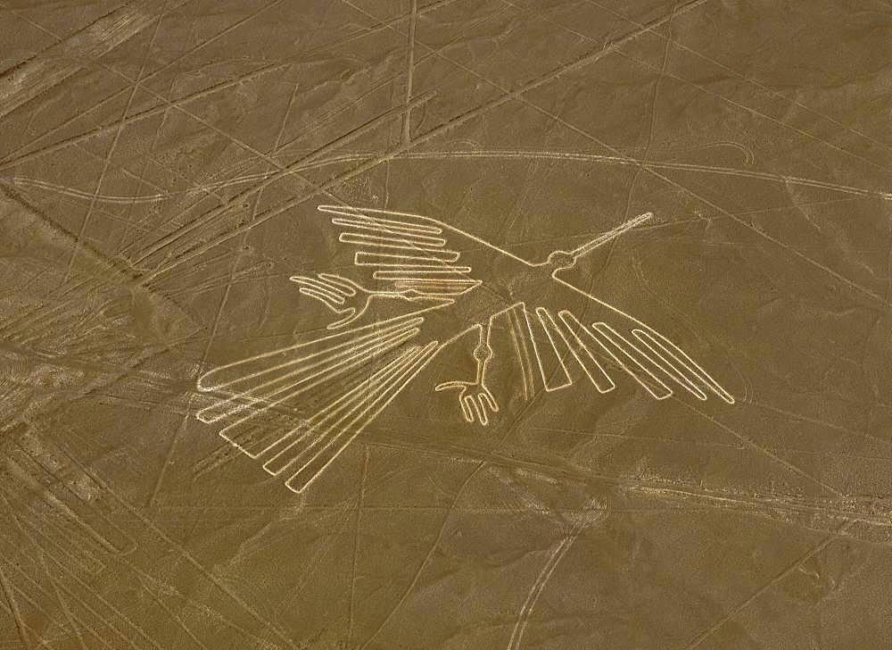 Nazca Lines (Condor)