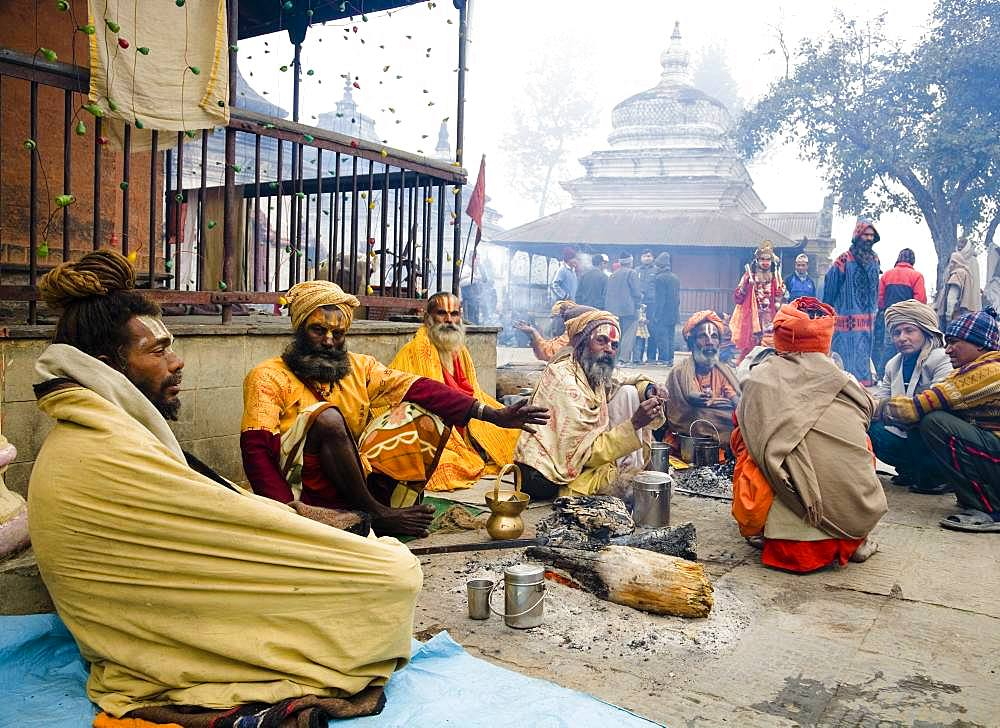 Sadhu in Shiva Ratri