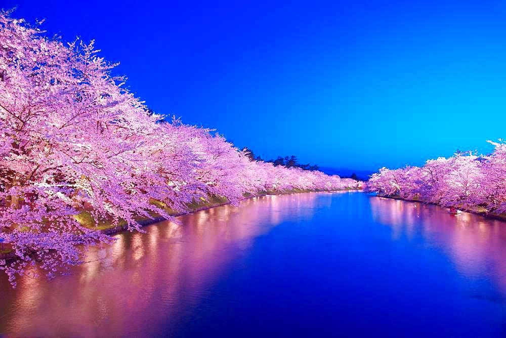 Aomori Prefecture, Japan - 1172-3645