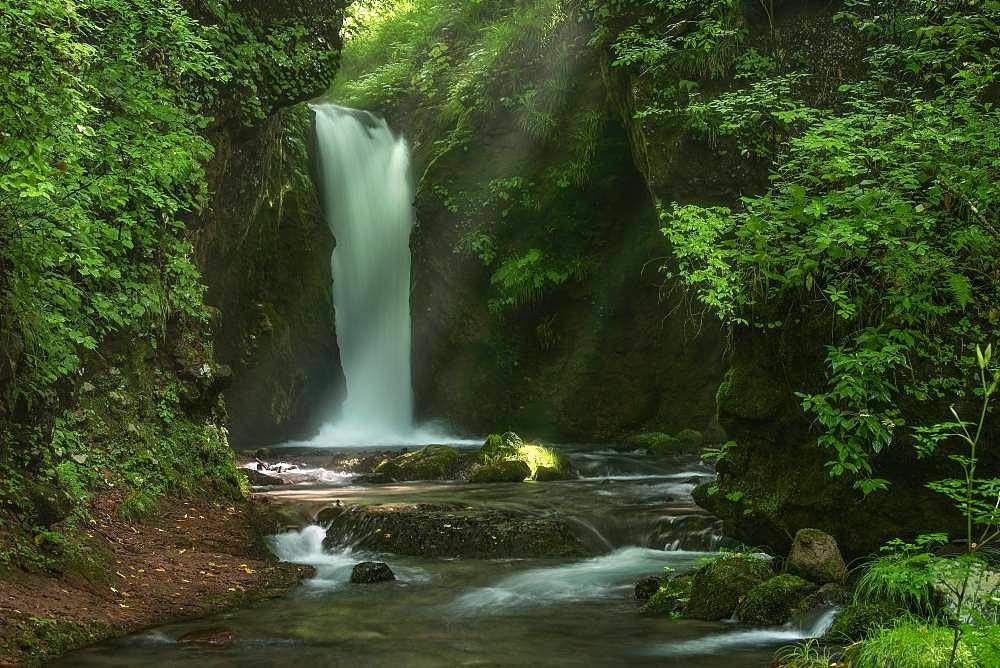 Nagano Prefecture, Japan - 1172-3781