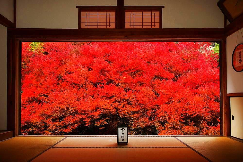 Hyogo Prefecture, Japan