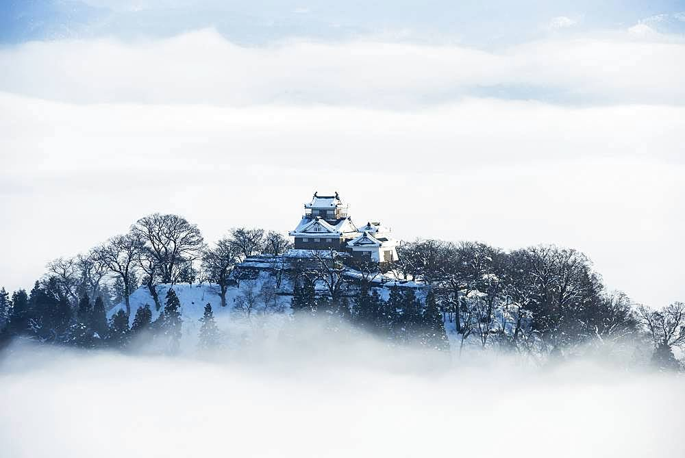 Fukui Prefecture, Japan - 1172-3921