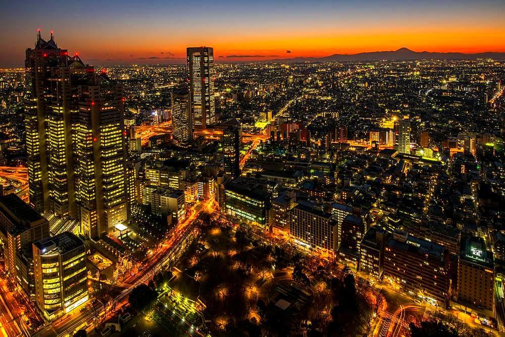 Shinjuku nightscape, Tokyo, Japan