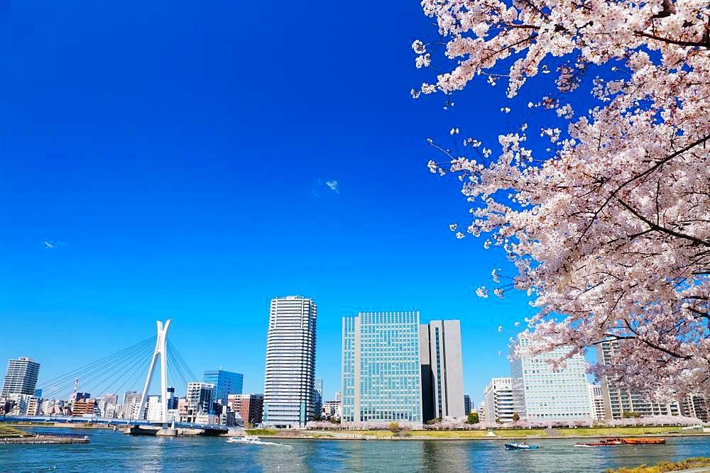 Sumida River, Tokyo, Japan